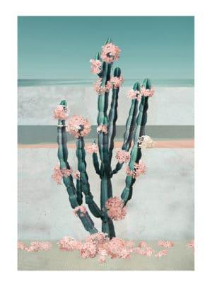 Cactus Dream nadia attura floral landscape giclee print