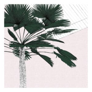 A Green Palms Blush Clare Halifax silkscreen print