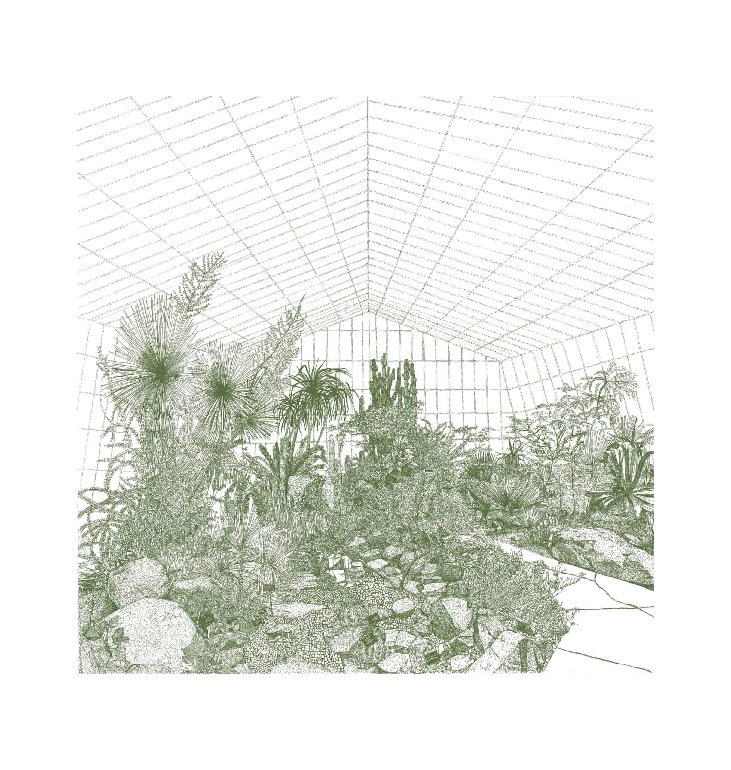 greenhouse cacti clare halifax botanical silkscreen print